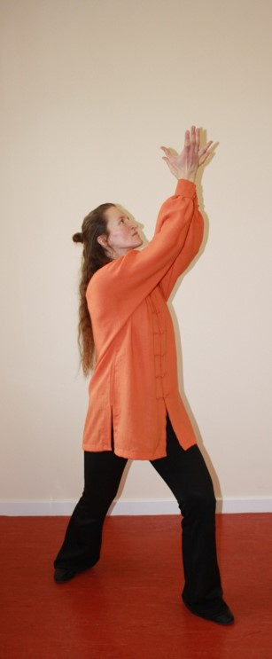 Qi Gong Fitness